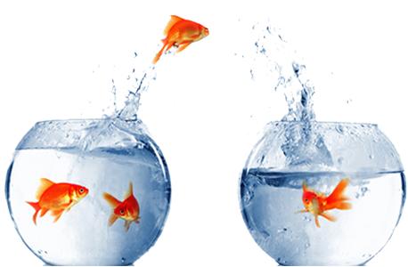 Director/VP Investor Relations BioPharm Opportunity on West Coast